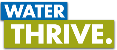 Image for Water To Thrive